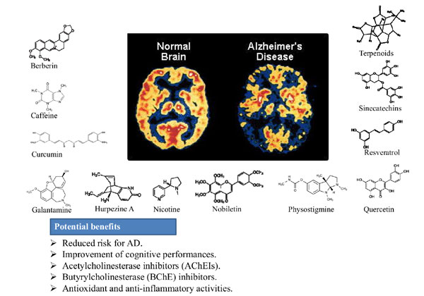 alzheimers disease abstract Reaction of amyloid-β peptide antibody with different infectious agents involved in alzheimer's disease abstract: as early as the 1980s.