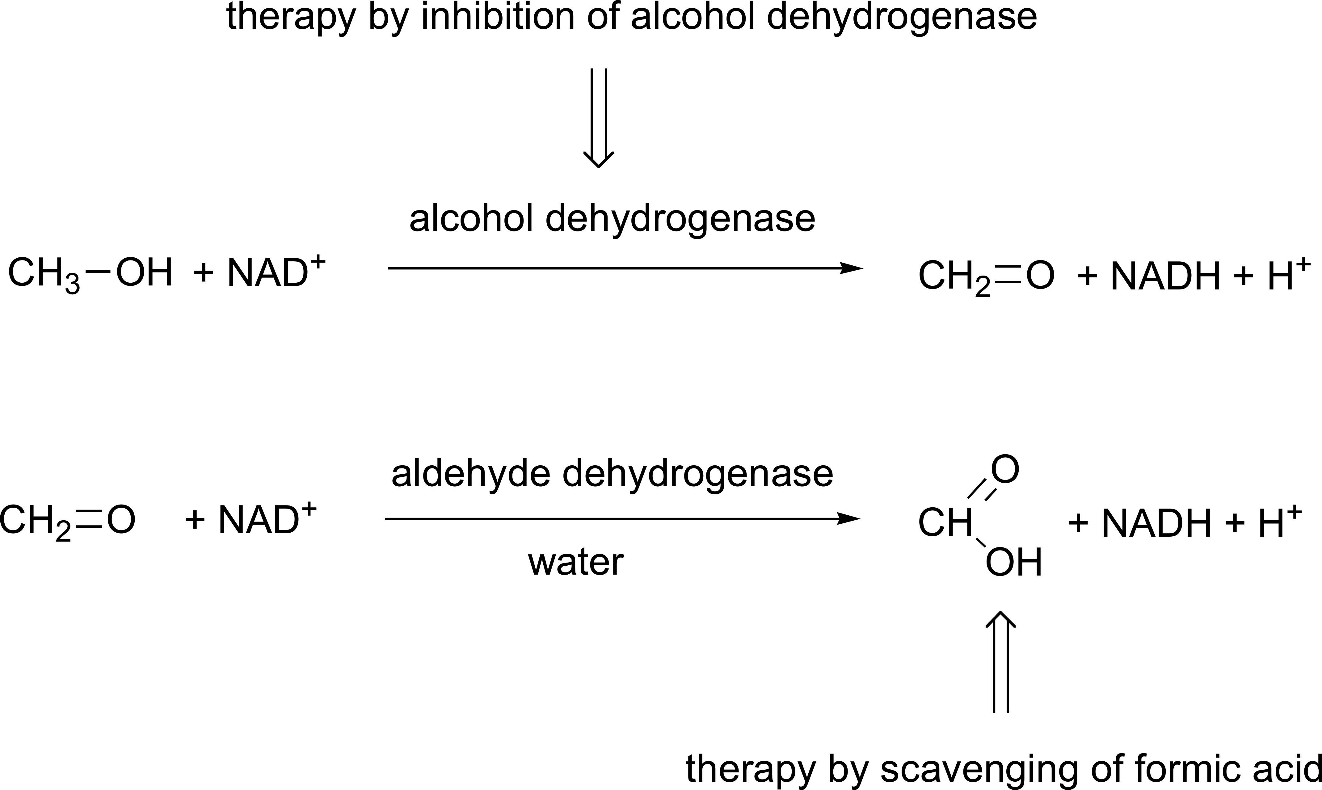 Home Page ::: Mini-Reviews in Medicinal Chemistry